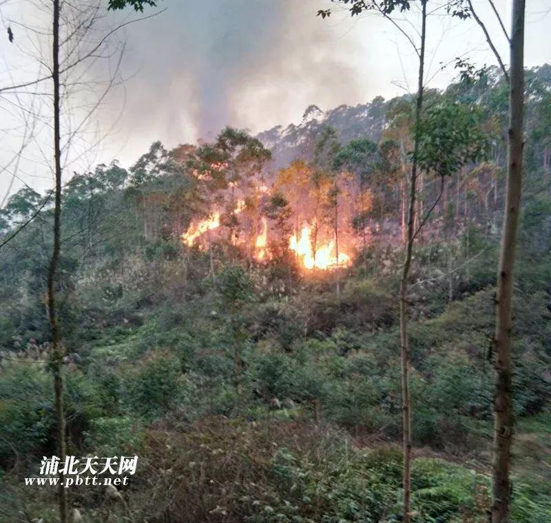 大单!钦州浦北又发生山火,火势肆虐蔓延了好几片山岭