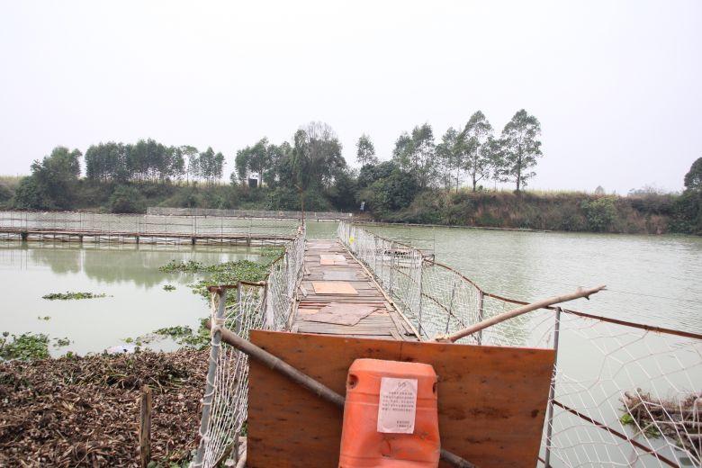 @久隆人,沙田村往久隆镇上浮桥已经断开,禁止通行