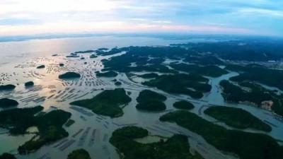 火了!钦州三墩海上公路成了网红景点,游客纷纷打卡…