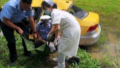 灵山一出租车冲出路面,坠下水田,事故前几秒钟乘客发现司机已经睡着了,车内后座三人因不系安全带.........