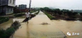 现实版活雷锋!钦州一小学生上学路上掉入河被水冲走,过路司机勇救人!